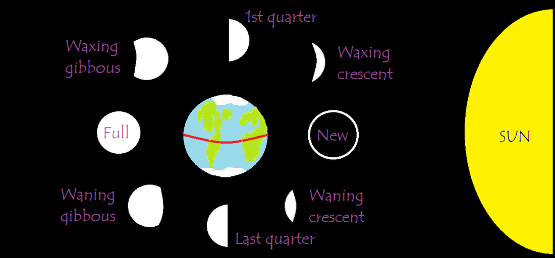 Diagram Of Moon Phases Another Blog About Wiring Diagram